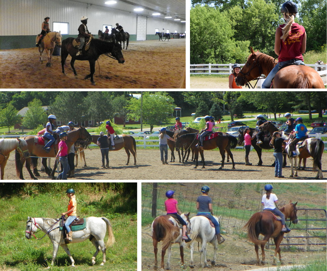 Horse equine physical therapy - Equine Therapy Or Horse Therapy Is Used To Promote Physical Occupational And Emotional Growth In Persons With Disabilities Interaction With Horses